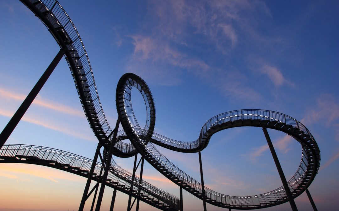 Small Business – A roller coaster worth the ride